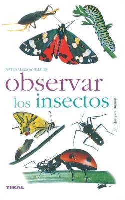 Observar los insectos