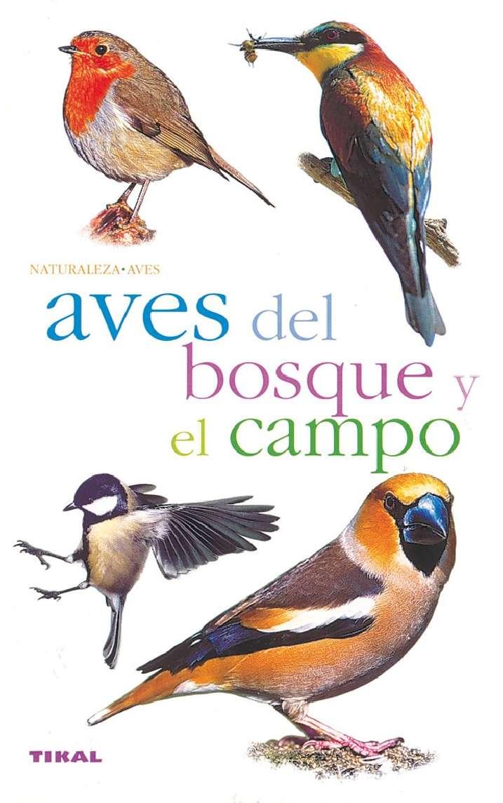 Aves del bosque y el campo