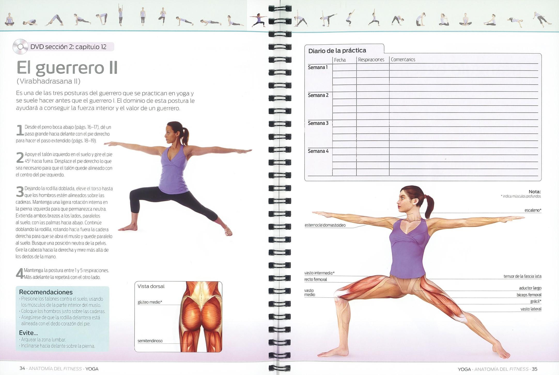 Yoga | Editorial Susaeta - Venta de libros infantiles, venta de ...