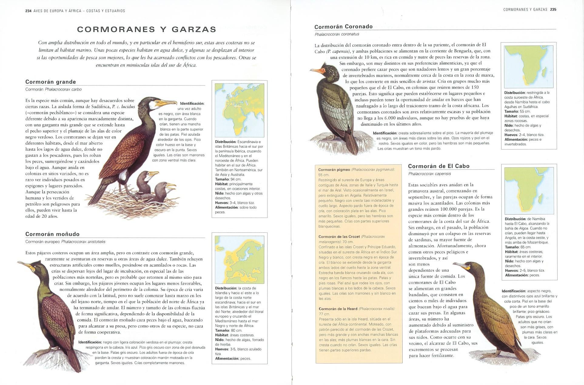 Aves de España y del mundo | Editorial Susaeta - Venta de
