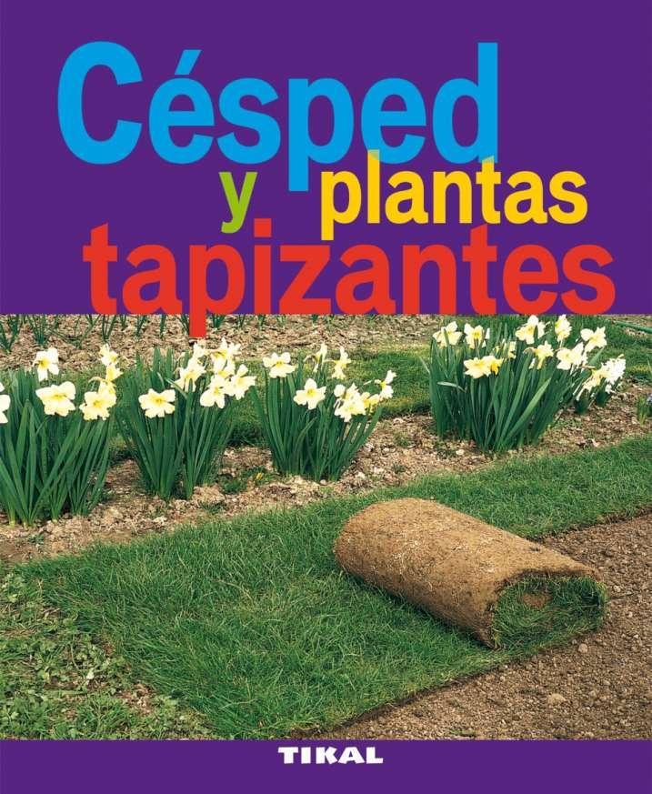 Césped y plantas tapizantes
