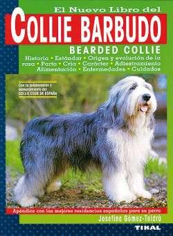Collie barbudo