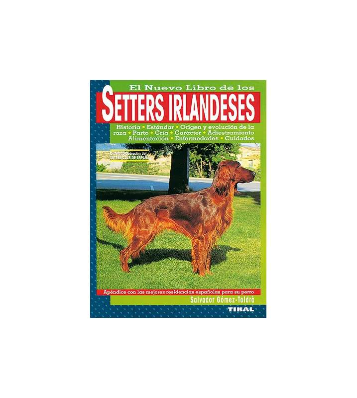 Setters irlandeses