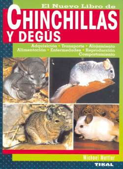 Chinchillas y degús