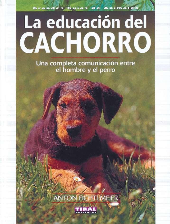 La educación del cachorro