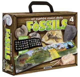 El curiós món dels fòssils