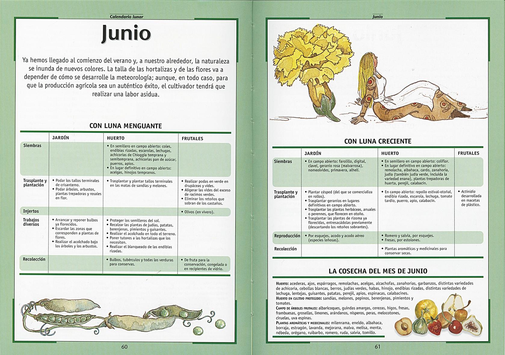 Calendario Lunar De Siembra.Calendario Lunar De Las Siembras Y Labores Agricolas Editorial Susaeta Venta De Libros Infantiles Venta De Libros Libros De Cocina Atlas