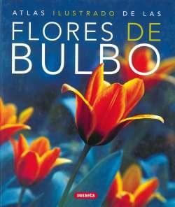 Las flores de bulbo