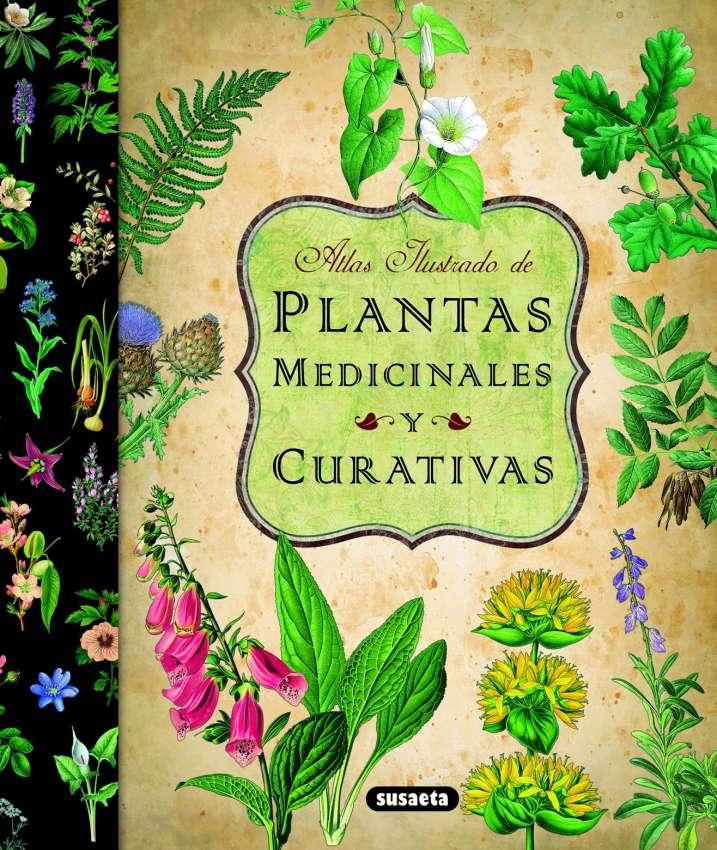 Plantas medicinales y...