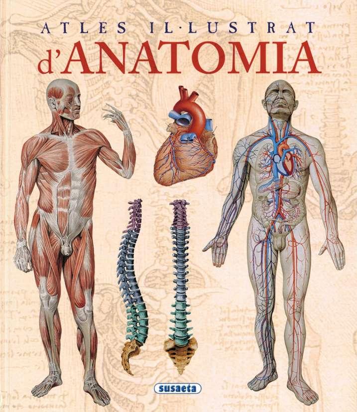 Atles il-lustrat d'anatomia