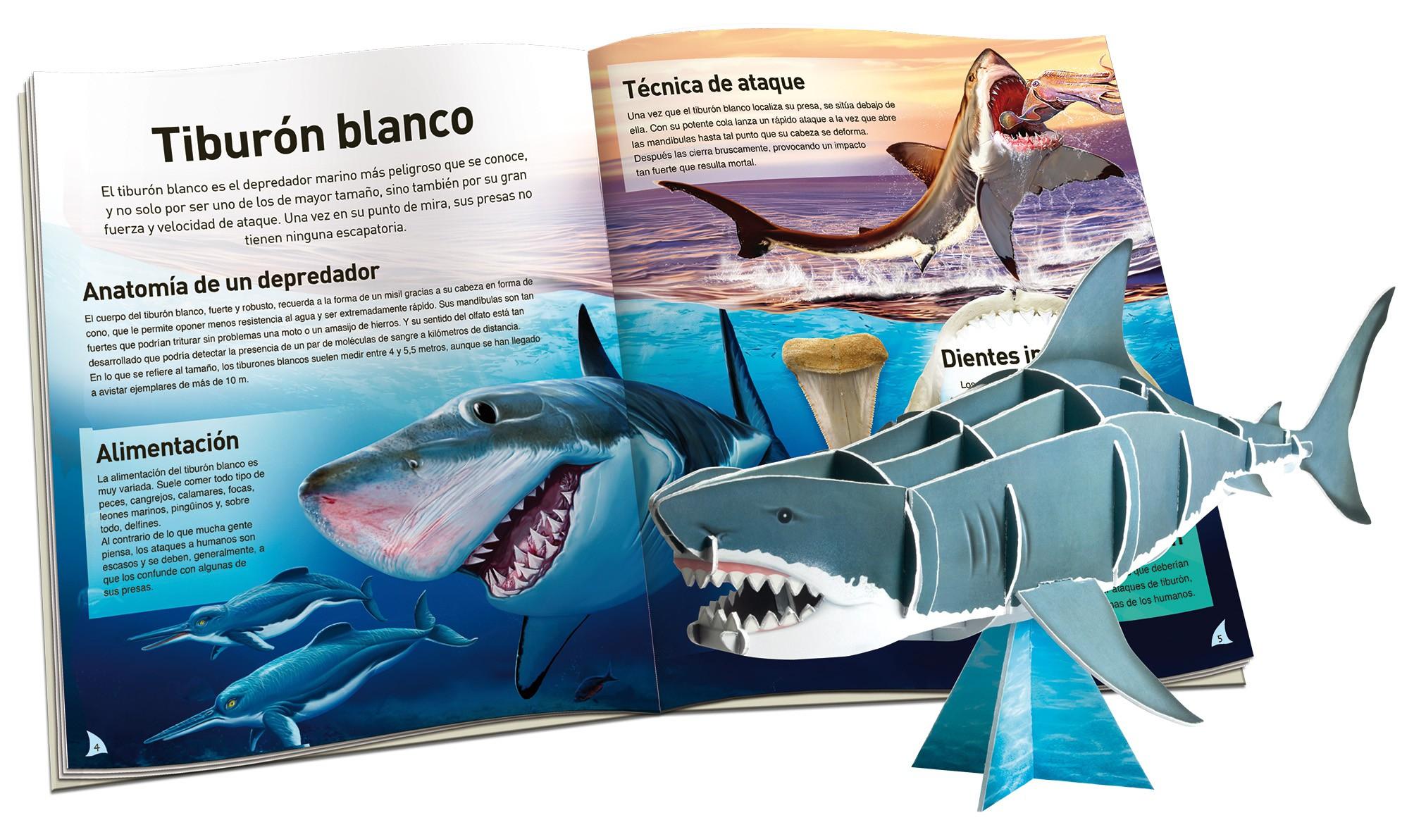 Tiburón | Editorial Susaeta - Venta de libros infantiles, venta de ...