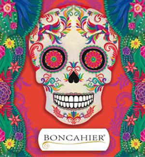 Catálogo Boncahier 2020